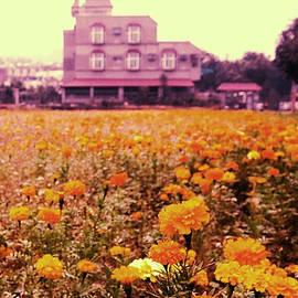 Blooms Of Joy by HweeYen Ong
