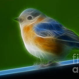 Gary Gingrich Galleries - Blue Bird -6318-fractal