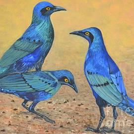 Caroline Street - Blue Birds of Happiness