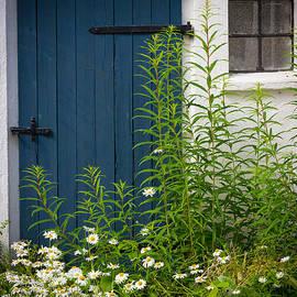 Inge Johnsson - Blue Door