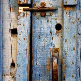 Lainie Wrightson - Blue Door Weathered to Perfection