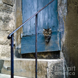 Blue Door with Pet Outlook by Heiko Koehrer-Wagner