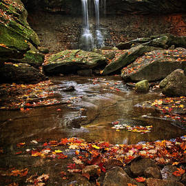 Blue Hen Falls In Autumn by Dale Kincaid