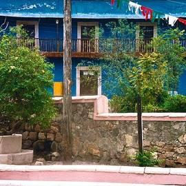 Blue House by Ricardo J Ruiz de Porras