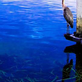 Christy Usilton - Blue Ledge