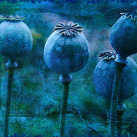 Blue Poppy Grunge by Sandra Foster