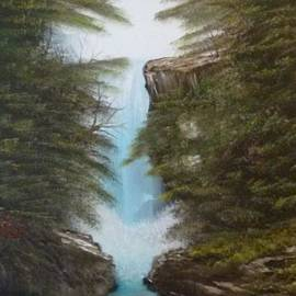 Blue Ridge Forest Waterfall 139 by Lee Bowman