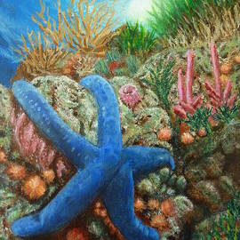Blue Seastar by Amelie Simmons