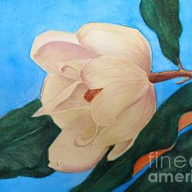 Blue Sky Magnolia by Nancy Kane Chapman