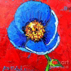Ana Maria Edulescu - Blue Tibetan Poppy