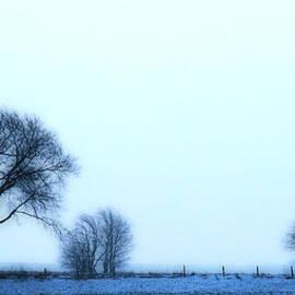Kimberleigh Ladd - Blue TreeLine