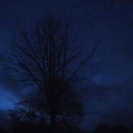 Colette V Hera  Guggenheim  - Blue Winter Night Denmark