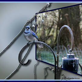 EricaMaxine  Price - BLUEJAY OOB - Featured in