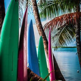 Karen Wiles - BOARDS of SURF