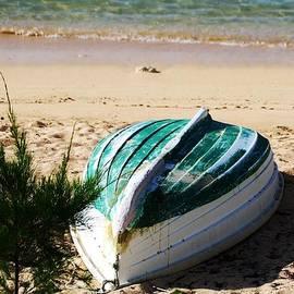 Still Life On Devonshire Bay Beach, Bermuda by Marcus Dagan