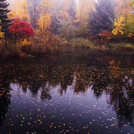 Boise Autumn by Vishwanath Bhat