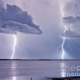 Bolts by Stephen Whalen