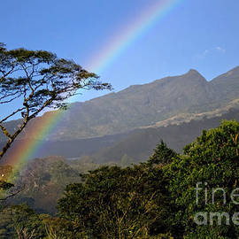 Bob Hislop - Boquete Rainbow
