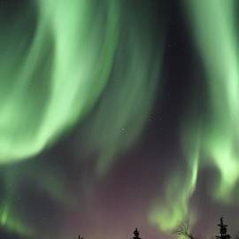 David Broome - Boreal Aurora Skyfire