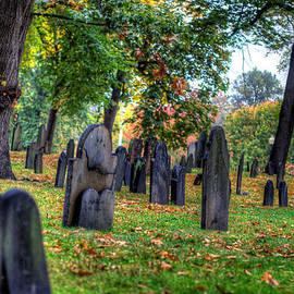 Boston Common Death Fall by Stephen McCabe