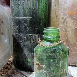 Bottle Hunt - Glass Treasures by Susan Carella