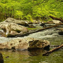 Robert Hebert - Boulders and Driftwood