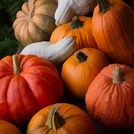 Michael Flood - Bountiful Harvest