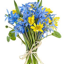 Bouquet of fresh spring flowers by Elena Elisseeva