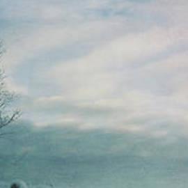 Priska Wettstein - Brave The Black Frost