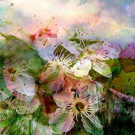 Breath of Spring by Shirley Sirois