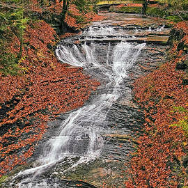 Bridal Veil Waterfall by Marcia Colelli