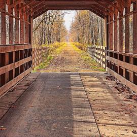 Bridge of Dreams by Marcia Colelli
