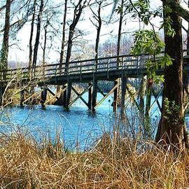 Cynthia Guinn - Bridge Over The Lake