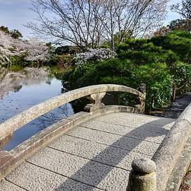 Bridge To The Japanese Garden by Matt Swinden