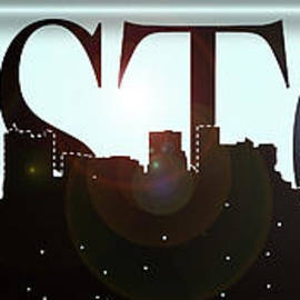 Joann Vitali - Bright Lights Boston Skyline