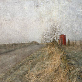 Liz  Alderdice - British Phone Box