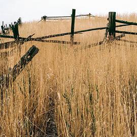 Robert VanDerWal - Broken Down Fence