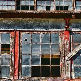 Broken Windows by Paul Ward