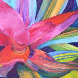 Bromeliad Pink by Margaret Saheed