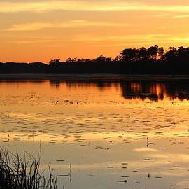 Cynthia Guinn - Brunswick Lake