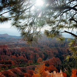 Tracy Winter - Bryce Canyon 3