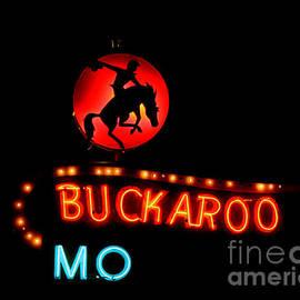 Catherine Sherman - Buckaroo Motel Neon Sign
