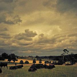 Bucolic English Pastures  by S Paul Sahm