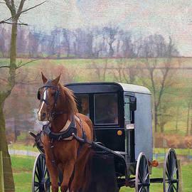 Buggy Ride by Jean-Pierre Ducondi