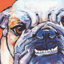 Bulldog by Greg and Linda Halom