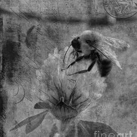 Lesa Fine - Bumble Bee Post Card 2 BW