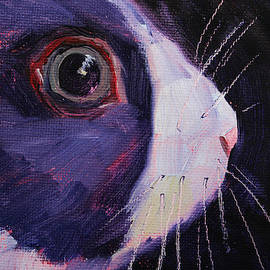 Bunny Thoughts by Nancy Merkle
