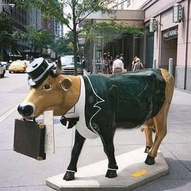 Jennifer Fliegel - Business Cow?