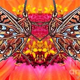 Kimberlee Baxter - Butterfly Jig