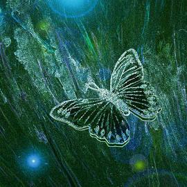 First Star Art  - Butterfly Magic by jrr